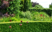 open tuin weekend 13-06-2015 031