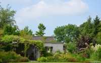 open tuin weekend 14-06-2015 008